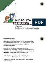 Hidroliza Sarurilor prezentare power point