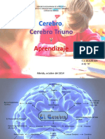 Cerebro Triuno y Aprendizaje