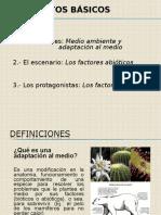 Factores Ambientales (C-2)