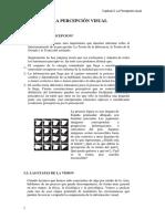 CAPITULO 3 La Percepcion Visual PARTE1