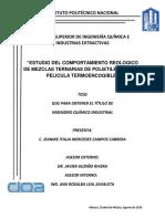 Tesis ECRMTPPT.pdf