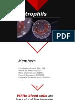 neutrophills