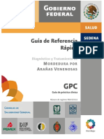 MORDEDURA ARANA.pdf
