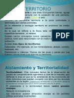 TERRITORIO clase 8 PowerPoint.pptx