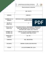 Formato de Practica de Ing. Industrial 2