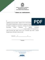Termo de Compromisso - Candidato Linguagem