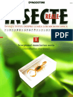 1 Insecte Reale
