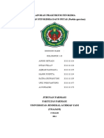 231594040 Laporan Praktikum Fitokima