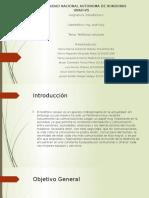 Presentación Proyecto Estadistica II