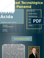 Presentaciondelluviaacida 141202204346 Conversion Gate02