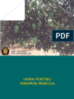 HPPT-MANGGA