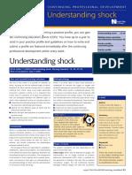 Understanding Shock 2000