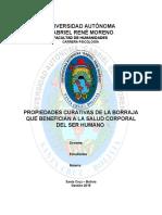 Monografía Planta Medicinal Barraja