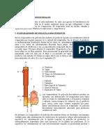 60775522-Evaporadores-Industriales.doc