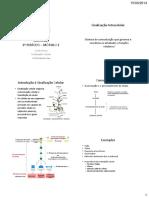 Conferência Sinalização Celular