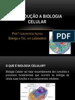 AULA 1 - Introdução a Biologia Celular