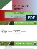 Horticultura Del Tomate