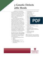 p2622.pdf