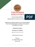 DFF AntonioAML Resumenespañol