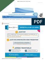 Infografia - Apostilla de La Haya - Guía de Trámites