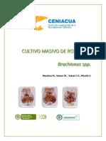 Ceniacua, Cultivo Marino de Rotiferos