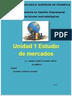 UNIDAD I DECISIONES MERCADOLOGICAS.docx