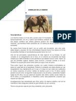 Animales de La Sabana.