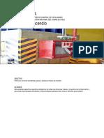 12 Guía ECF Incendio_v1.pdf