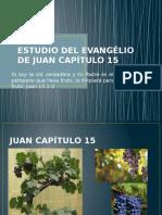 Estudio Del Evangélio de Juan Capítulo 15