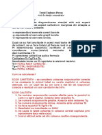 INTERPRETARE+TEST+TOLOUSE+PIERON.docx