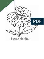 Sketsa Bunga Dahlia
