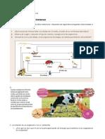 Guía N°1 Biología III.docx