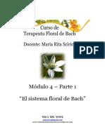 Modulo 4 Parte 1 Flores de Bach