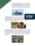 Actividades Agropecuarias