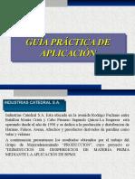 Guía Práctica de Aplicación G. Mejora2016