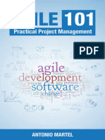 Agile 101 Practical Project Management