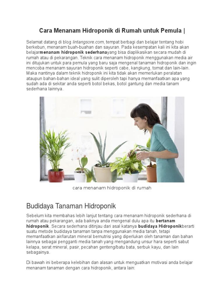 Cara Menanam Hidroponik Di Rumah Untuk Pemula
