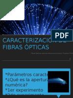fibras-2
