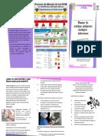 RPBI.pdf