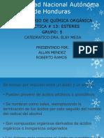 Presentacion de Esteres (Quimica Organica )