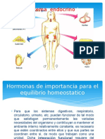 Hormonas de Importancia Para El Equilibrio Homeostatico%5b1%5d (1)