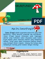 Jamur(Fungi)