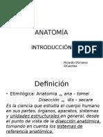 Clase 01 ANATOMÍA INTRODUCCIÓN Y HUESOS DE MIEMBRO SUPERIOR.pptx