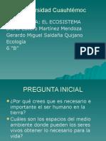 Diana Lucero.pptx