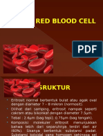 Red Blood Cell His Case 3