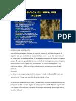 Composicion Quimica de Los Huesos Division Del Esqueleto