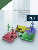 DEFINICION Y DESCRIPCION PUESTOS_TRABAJO ONG´S DROGAS ASTURIAS
