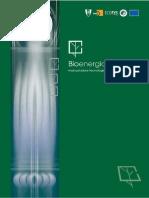 Bioenergia - manual e projecto.pdf