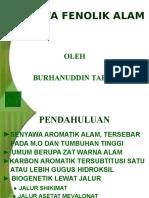 Senyawa Fenolik Alam 1