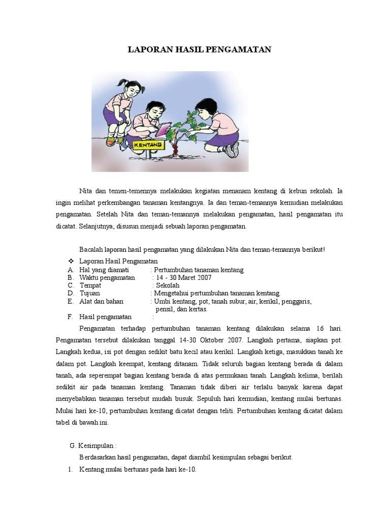 Contoh Laporan Hasil Pengamatan Kelas 6 Guru Paud